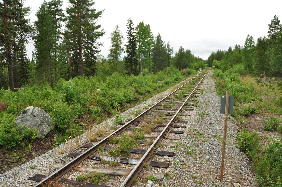 http://www.stifter-mauth.de/bahn/wp-content/uploads/fotos/schweden/2019/087_20190811_Gleis_Inlandsbahn_Vilhelmina_Norra.jpg